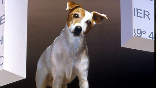 jack russell terrier dog in 3d mural by john pugh in bishop california